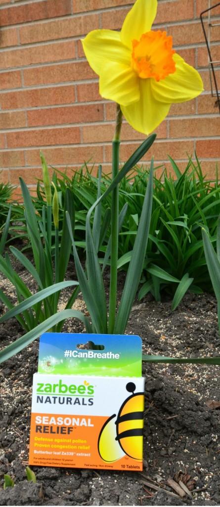 Zarbee's Naturals Seasonal Relief Daffodil