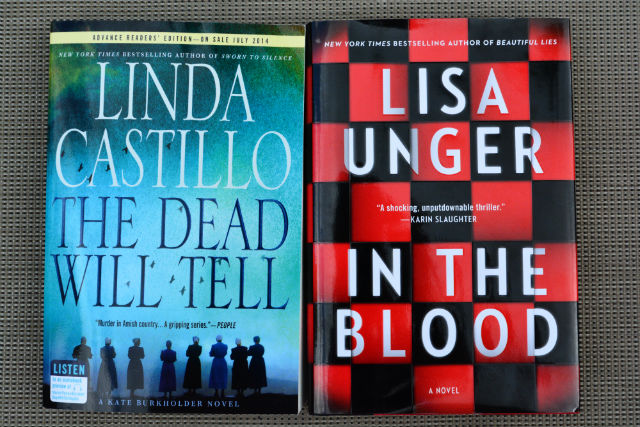 Linda Castillo The Dead Will Tell Lisa Unger In The Blood
