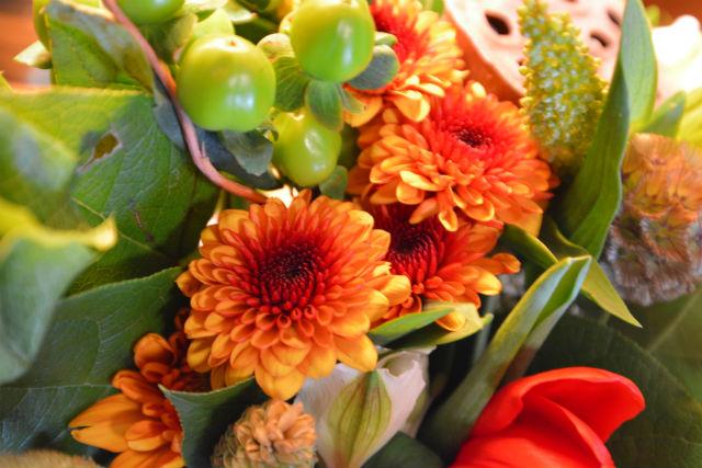 Flowers for Dreams Closeup1